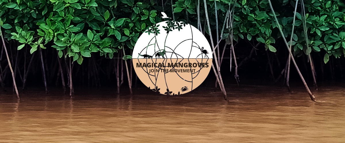 Pheroza Godrej talk for Mangroves
